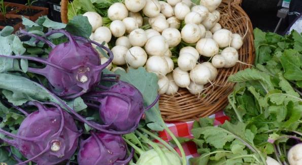Purple Kohlrabi and White Turnips from Radix Farm in Upper Marlboro, MD (Photo courtesy of radixfarm.wordpress.com)