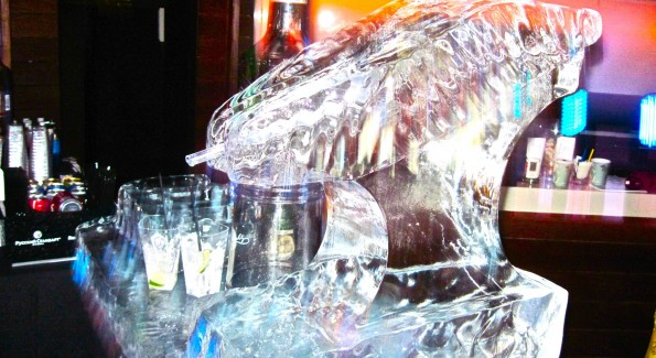 Ice Luge (Photograph by Grace Romanowsky.)
