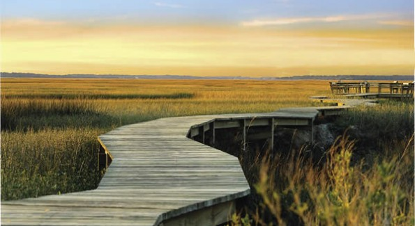 "At Amelia Island, there is an emphasis on  ""harmony with nature.""  (Courtesy Photo)"