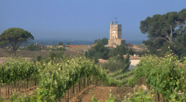 The Languedoc is dry and sunny, with low rainfall and strong winds during the growing season. Photo courtesy of Wines of Languedoc.